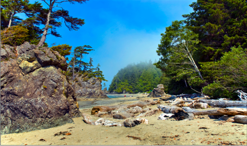 Brady's Beach, Bamfield, British Columbia